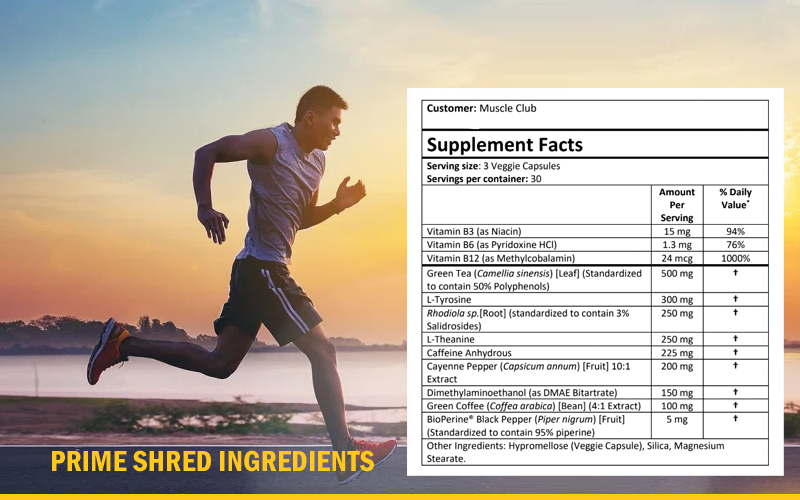 prime shred ingredients in Australia for weight loss